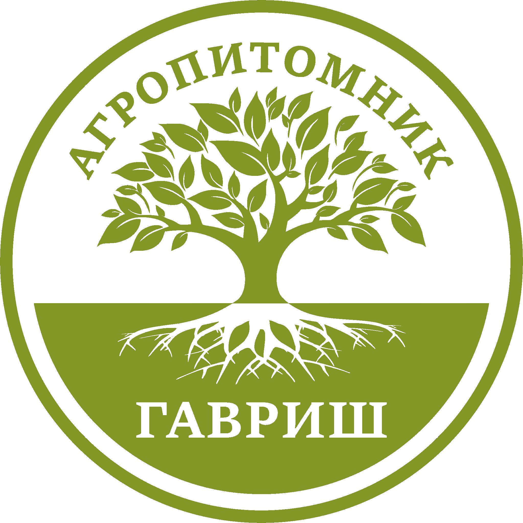 Gavrish Logo