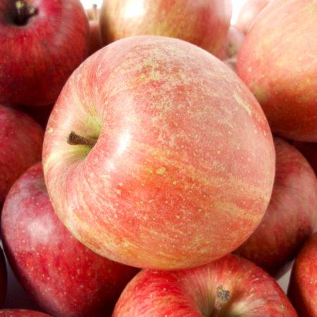 Яблоня «Фуджи»