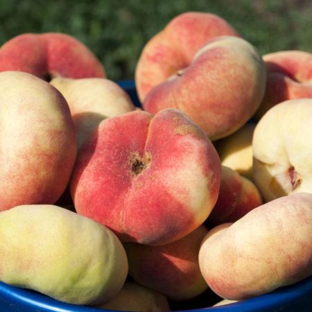 Персик «Инжирный»