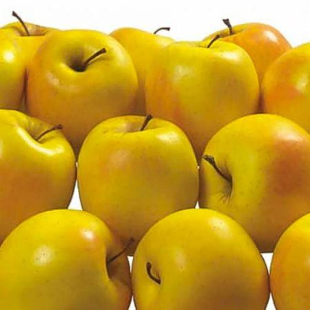 Яблоня «Лимонка»